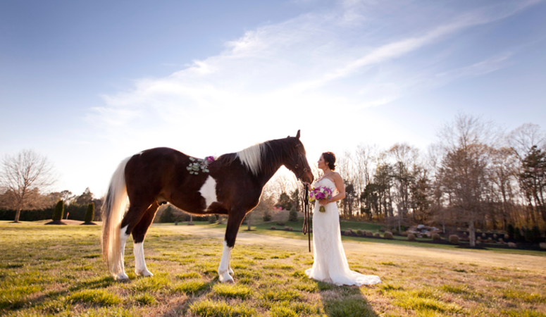 Bridal Portraits with Sara Kristen : Animal Lovers